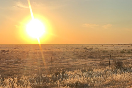Sunset on the Hay Plains